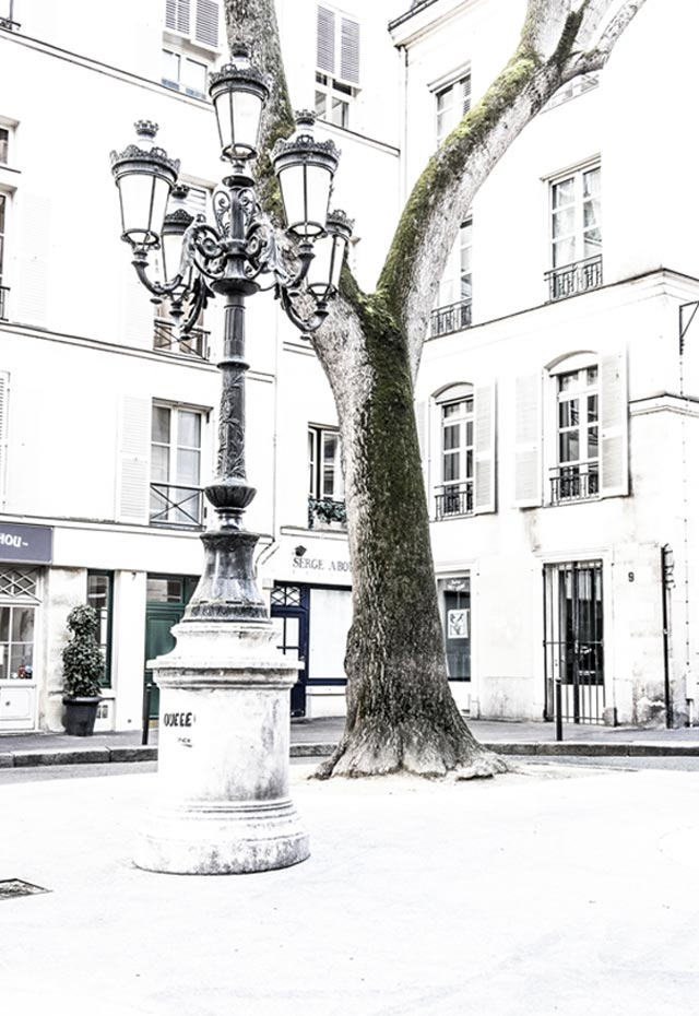 Musée Eugène Delacroix, Place Furstenberg à Paris (Photo Arbre)