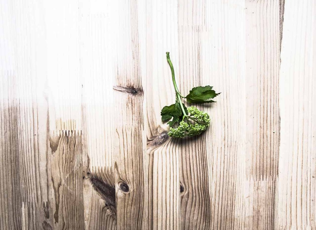 Green Foliage on wood table