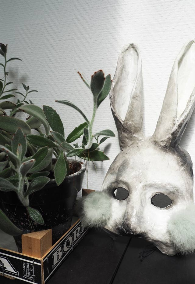 Rabbit ear green plant and a theatre rabbit mask